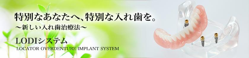 LODIシステム